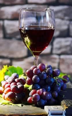 Bistro l'Olivier, carte des vins